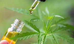 CBD and its derivative forms all in one place