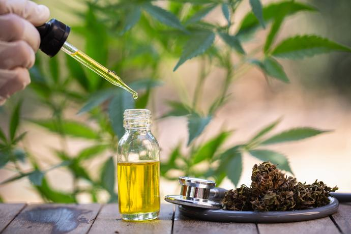 Buy CBD online at the best hemp products store